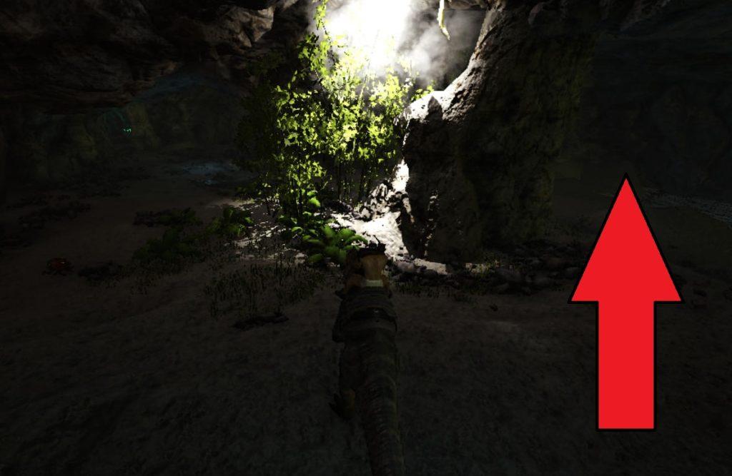 狩人の洞窟内