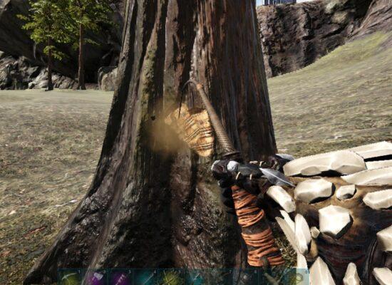 鞭で木攻撃