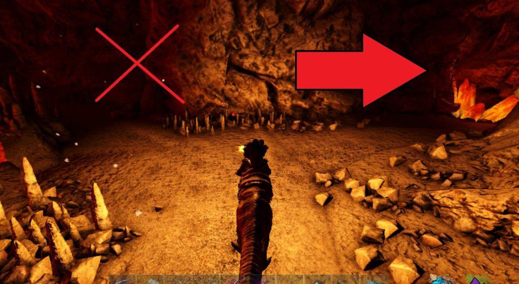 大物の洞窟の道順