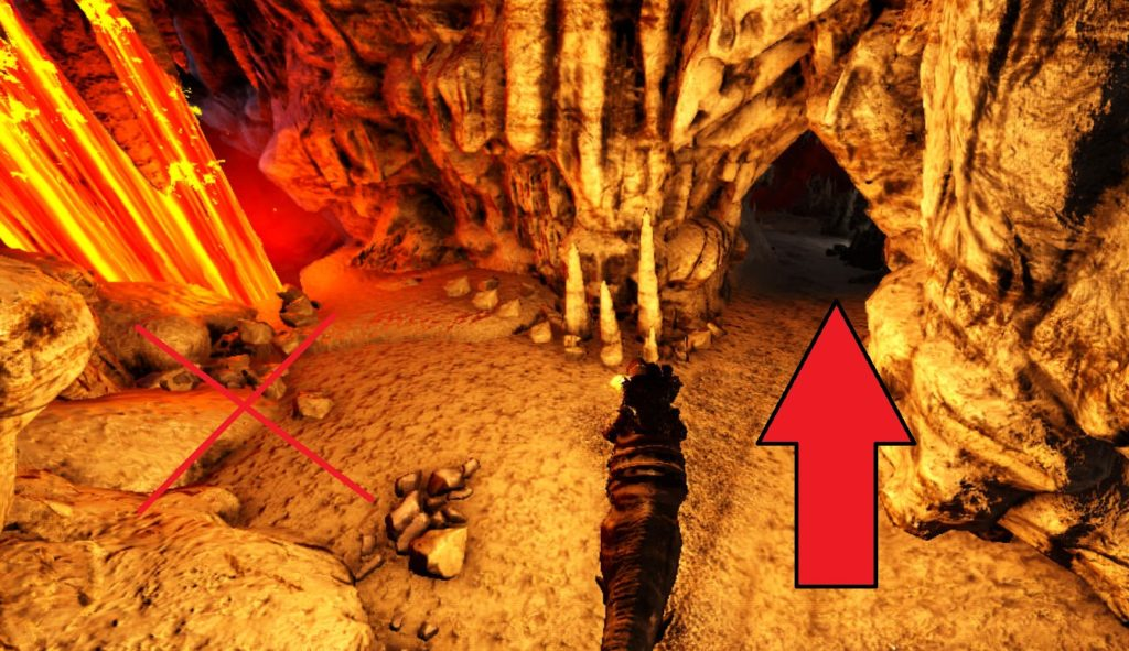 大物の洞窟道順