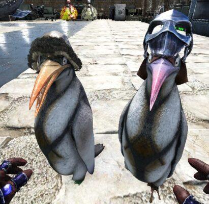 カイルクペンギン