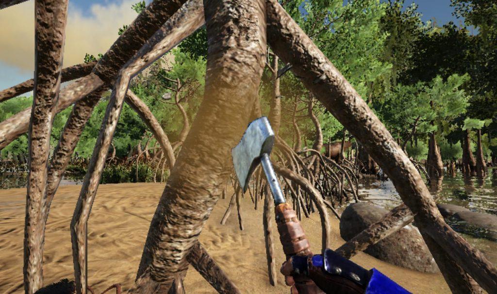 湿地帯のマングローブからレアマッシュルーム伐採入手