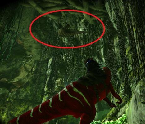 洞窟内のメガラニア