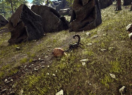 野生のドエディクルス