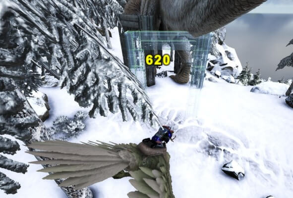 ギガノトサウルスの誘い込み成功