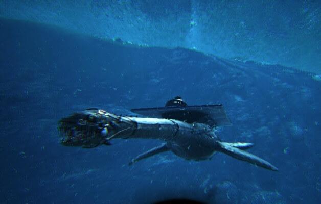 エラスモサウルスの泳ぐスピード