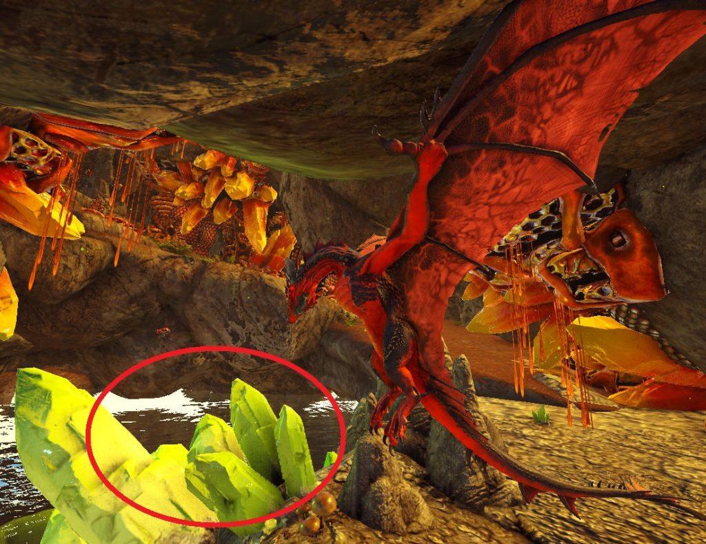 蜂蜜洞窟の奥