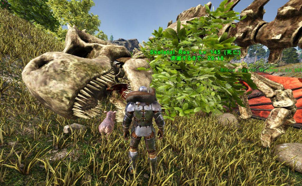 骨のティラノサウルス
