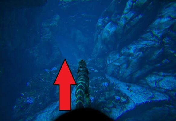 海底洞窟の入口