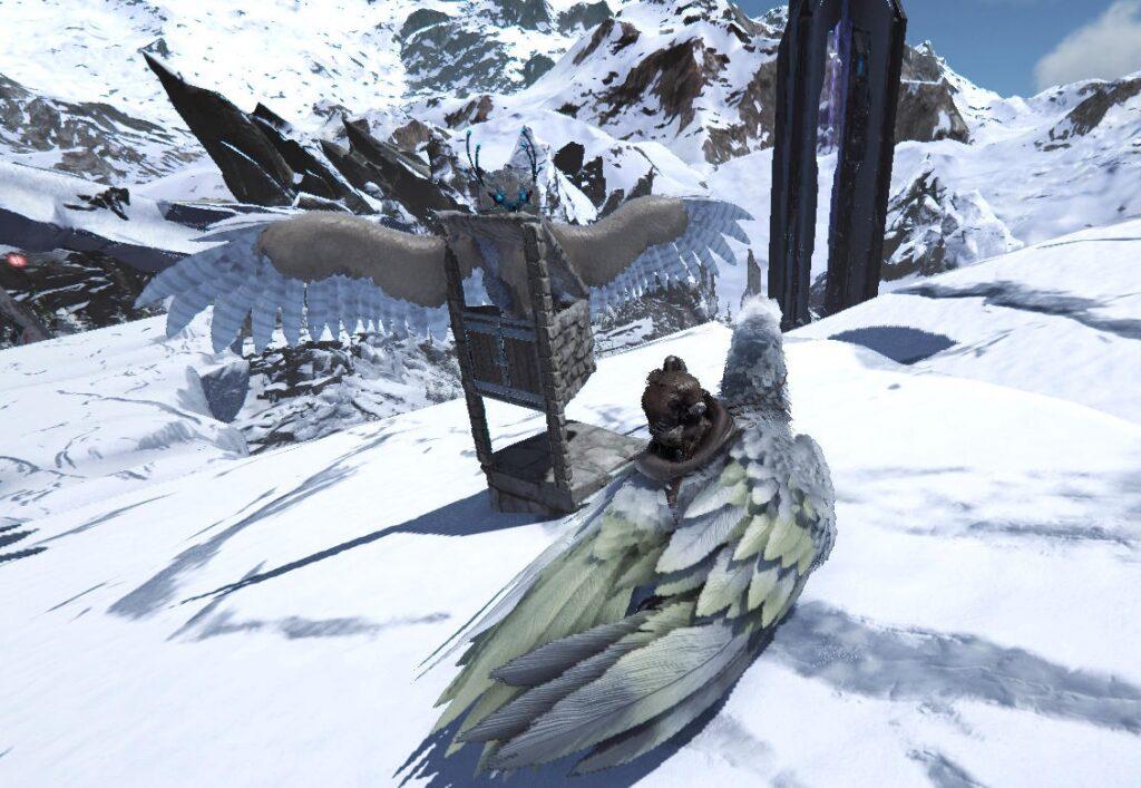雪フクロウ捕獲