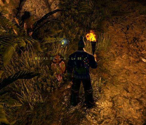 堕落の洞窟内にいるグローテイル