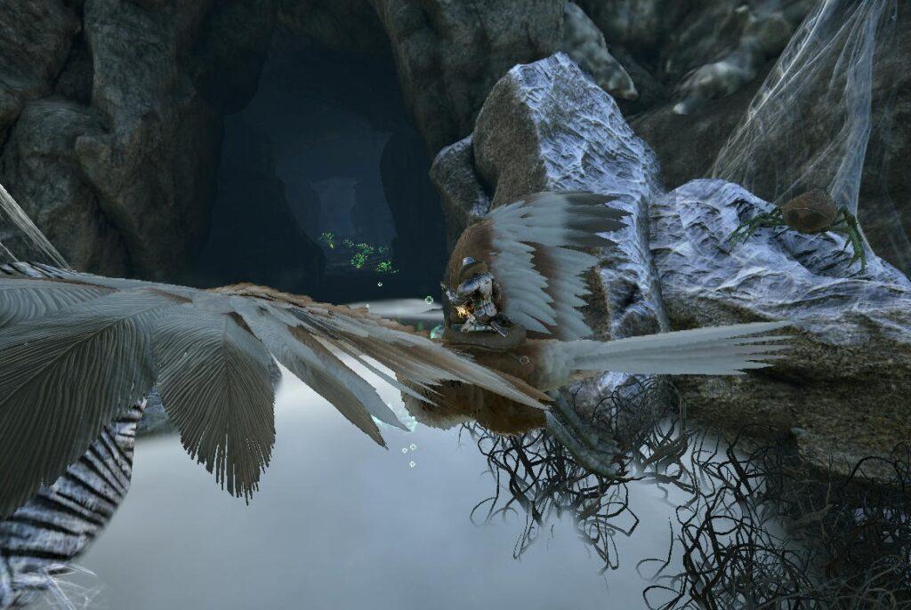 バルゲロのレッドウッド洞窟