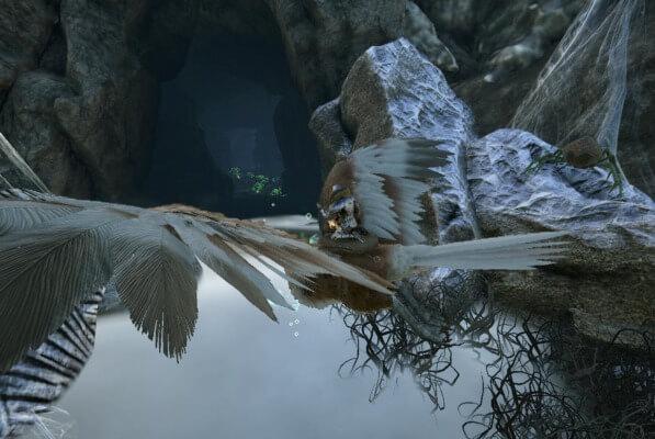 バルゲロのレッドウッド洞窟の入口