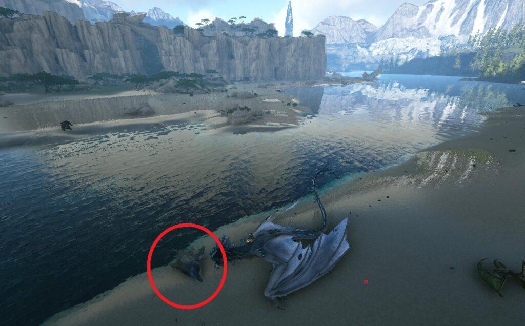 砂浜エリアのイクチオサウルスの死骸