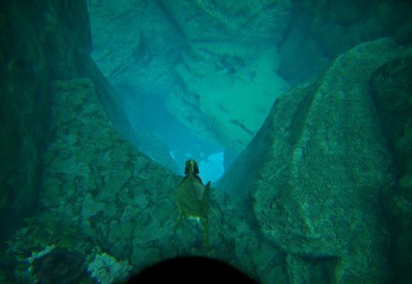 バルゲロの深海への入口1