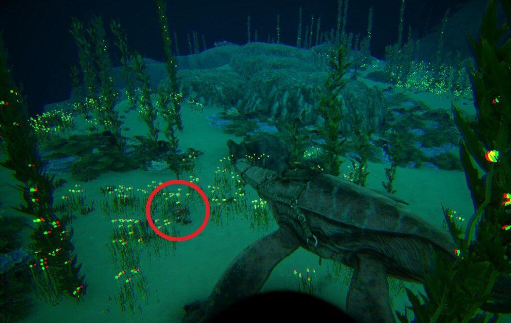 38.1 25.0の深海クレート