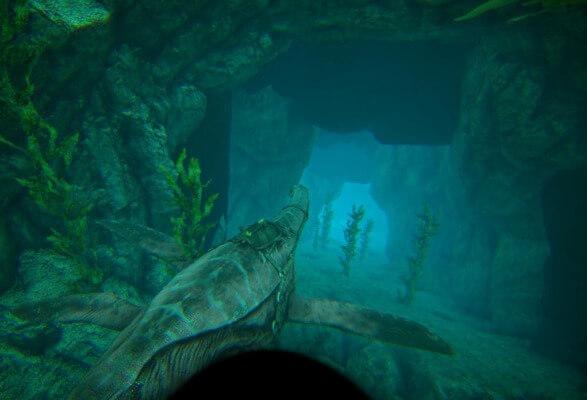 バルゲロの深海への入口2