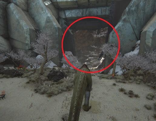 エクスティンクションの雪原洞窟入口