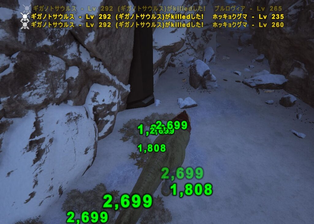 雪原洞窟の内部
