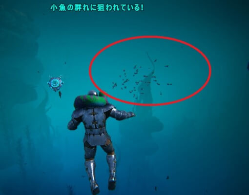 小魚の群れに狙われている!